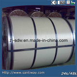 Galvanzied Color Coated Metal Steel Coil Sheet Wholesale