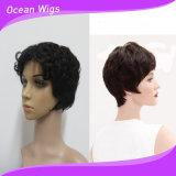 Short Women Human Hair Wigs