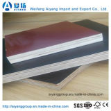 Black/Brown/Red Film Faced Plywood for Construction/Decoration Application
