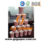 Good Price Paper Disposable Cup with Good Quality