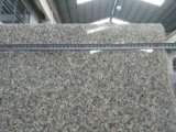 Pink Granite G635 Granite Polished Tiles/Slabs