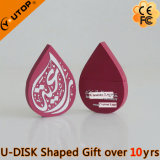 PVC Gift 2D/3D Custom Logo Waterdrop Shaped USB Pendrive (YT-6660)