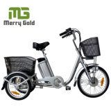 2017 Hot Sale Economic 250W Samll Electric Tricycle for Adults