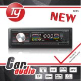 Detachable Panel Car Audio with DVD/MP3/RDS
