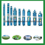 6 \8 \10 Inch Water Submersible Deep Well Pumps for Drip Irrigation