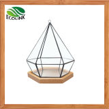 Glass & Bamboo Geometric Succulent Plant Pot