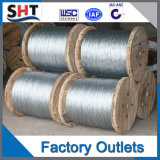Alsi 316L Stainless Steel Wire with Good Price