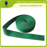 Factory New Design Wholesale Strength Polypropylene Webbing Band for Bags
