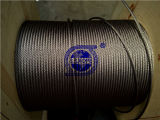 Chinese Famour Brand Stainless Steel Wire Rope