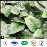 Sunwing Hot Artificial Plastic Palm Leaves for Garden