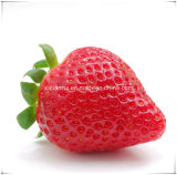 Manufacturer Natural Strawberry/Fragaria Ananassa Duch. Extract Powder