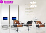 Styling Chair, Salon Chair, Barber Chair, Hairdressing Chair (Package NP1083)