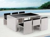 Wicker Outdoor Patio Rattan Dining Furniture Set (MTC-109)