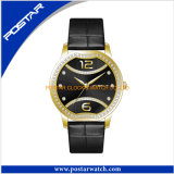 Morden Personalization Ladies Watch Women′s Watch with Ipg Plating