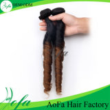 New Style Unprocessed Brazilian Ombre Virgin Hair Human Hair Extension