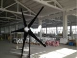 600W Horizontal Wind Power Generator with High Quality (100W-20KW)