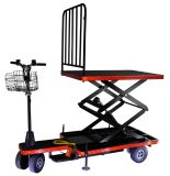 Cargo Tricycle (DH-LS1-C5 No Fence Curtis Controller 500W Motor)