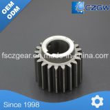 Customized Nonstandard Transmission Gear Spur Gear for Various Machinery