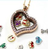Wholesale 30mm Round Floating Charms Glass Crystal Locket Necklace