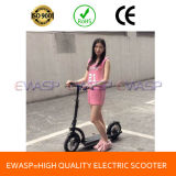New 300W Lithium Battery E-Scooter (EWASP-1201)
