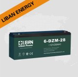 Lead Acid Battery (6-DZM-28)