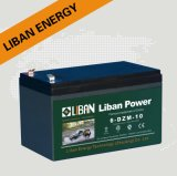 Lead Acid Battery (6-DZM-10) -29