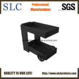 Wicker Trolley/Solar Trolley/Outdoor Trolley/Rattan Trolley (SC-B5064)