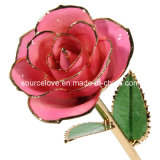 Christmas Gift or Valentines Day with 24k Gold Dipped Rose (MG004red)
