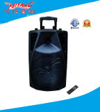 New Arrival 12 Inch Professional Trolley Speaker with Araneid Cover