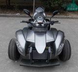 250cc ATV EEC Approved Road Legal Quad Bikes for 2 Passengers