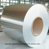 High Quality Stainless Steel (201 202 304) Factpry Price