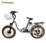 26*4.0 Kenda Type Rear Max 1000W Electric Bicycle
