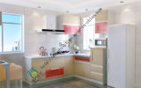 Multi Function Lacquer Kitchen Cabinets (zs-208)