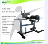 Fitness Equipment GHD Bench/Roman Chair/Glute Ham Developer