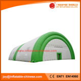 Custom Outdoor Inflatable Special Type (Tent1-202B)