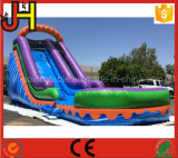 Competitive Price Inflatable Slide with Pool for Sale