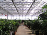 China Markrolon Polycarbonate Roofing Sheets for Green House