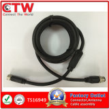 M8 to M12 Cable Assembly