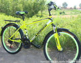 21 Speed MTB High Quality MTB for Sale