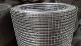 China Supplier Manufacturer of Galvanized Welded Wire Mesh for Bird Cage