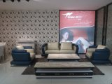 New Living Room Genuine Leather Sofa (SBL-9182)