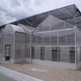 A PC Sheet Greenhouse