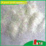 Wholesale Top 10 Glitter for Screen Printing