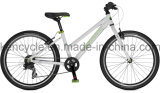 Hot Selling Mountain Bike/MTB Bike/Mountain Bike Bicycles/MTB Bicycles Atb Bike
