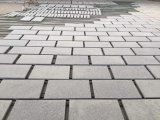 Natural Grey Granite Tiles/Cut-to-Size for Building Projects