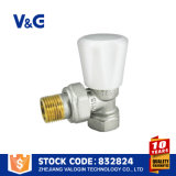 Valogin China Supplier Brass Radiator Valve (VG-K17101)