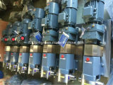 Food Grade Stainless Steel Rotary Lobe Pump
