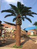 Indoor and Outdoor Artificial Coconut Date Palm Tree