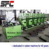 Rubber Sole Vulcanizing Press, Rubber Sole Vulcanizer (XLB-450X600X2)