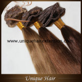European Remy Clip in Hair Extensions